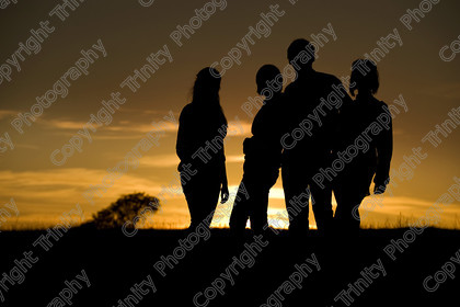 122 8953 royle 